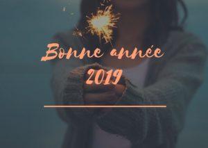 Bonne année 2019 - Bienvenuechezvero.fr