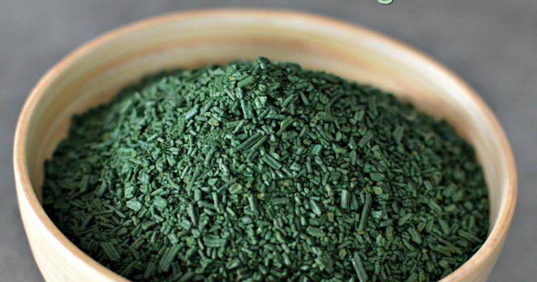 Spiruline – Tout savoir sur cette algue