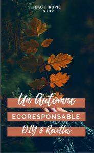 Un automne ecoresponsable DIY et recettes