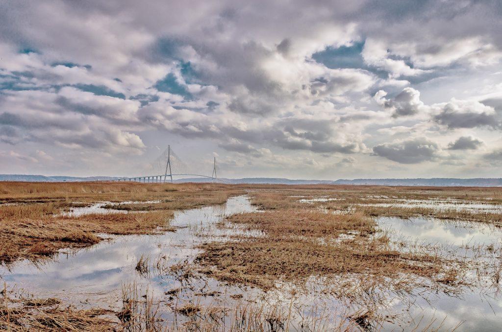 Balades au vert cet été - Pont de Normandie